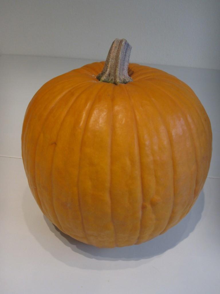 What a purty pumpkin!